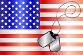 Dog Tags On Usa Flag
