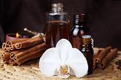 essential oils  and flower orchid