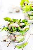 Fresh salad with radishes, mushrooms and cucumbers