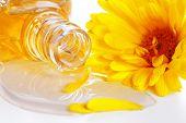 Aromatherapie etherische olie met bloem-kruiden geneeskunde