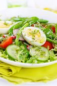 Summer salad of tomatoes, cucumbers, asparagus, young green peas dressed with olive oil and watercre
