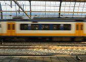 Dutch Train In Motion