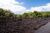 Paisaje volcánico - Rangitoto Island, Nueva Zelanda