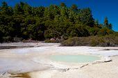 Geothermal Landscape - Rotorua, New Zealand