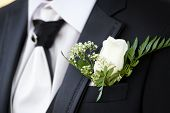 Buttonhole Of Bridegroom