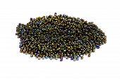 Metallic Bead