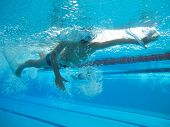 Swimmer In Comptition