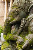 Ganesh de piedra con musgo en su rostro en Bali