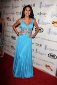 LOS ANGELES - AUG 16:  Joyce Giraud at the 28th Annual Imagen Awards at the Beverly Hilton Hotel on