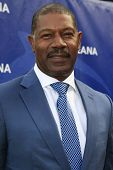 LOS ANGELES - AUG 18:  Dennis Haysbert at the Oceana's 6th Annual SeaChange Summer Party at the Beverly Hilton Hotel on August 18, 2013 in Beverly Hills, CA