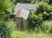 Hut In France