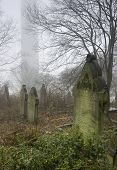 row of crosses in misty victorian cemetery