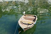 Old rough looking dinghy boat with seagull and paddle in green sea