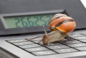 Slow Finance