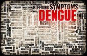 foto of epidemic  - Dengue Fever Concept as a Medical Disease Art - JPG