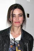 LOS ANGELES - AUG 24:  Amelia Heinle at the Young & Restless Fan Club Dinner at the Universal Sheraton Hotel on August 24, 2013 in Los Angeles, CA