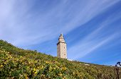 Lighthouse In Hercules Tower
