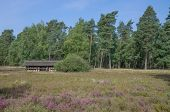 Beehive,Lueneburg Heath,Germany
