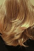 Blond Back