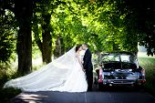 stock photo of limousine  - Happy bride and groom in a black car on wedding day