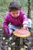 stock photo of face-fungus  - Little girl in the forest fly agaric finger touches - JPG