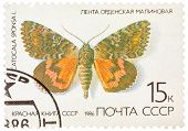 Stamp Printed In The Ussr (russia) Shows A Butterfly With The Inscription