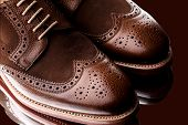 Fabolous Two Tone Men Brogue Closeup