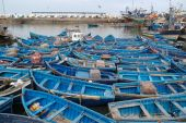 Blue Boats At The Marina