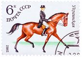 Stamp Printed In Ussr Shows A Ukrainian Sports Horse For Dressage, Series Horse Breed In A Equestria