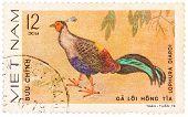 Stamp Printed In Vietnam Shows Animal Ornamental Bird