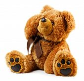 foto of teddy  - Toy teddy bear isolated on white background - JPG