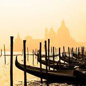 pic of gondolier  - Romantic Italian city of Venice  - JPG