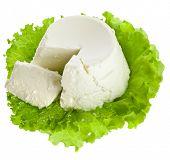 Ricotta Cheese isolated on white background