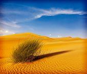 Dunes of Thar Desert. Sam Sand dunes, Rajasthan, India. Vintage retro hipster style