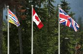 stock photo of flag pole  - Three Canadian Flags - JPG