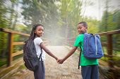 Cute pupils holding hands against bridge with railings leading towards forest