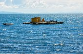 Floating Island, Titicaca Lake, Bolivia