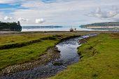 Sublime Creek, Chiloé Island, Chile