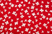 Floral pattern. Red and white flowers print as background.