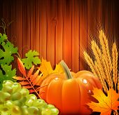 stock photo of fall-wheat  -  background for Thanksgiving Day with apples - JPG
