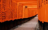 Fushimi Inari Taisha Shrine in Kyoto City, Japan, shooting at public area