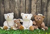 Friends Or Happy Teddy Bear Family On Wooden Background For Concepts.
