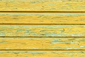 The Yellow Wood Texture With Natural Patterns
