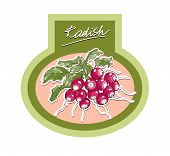 Labels For Vegetable Products, Vector Realistic