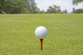 Golf Ball - Stock Image