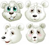 Illustration of the heads of polar bears on a white background