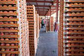 Products Of Agricultural Cooperative Of Naoussa, Greece, Carried In Boxes. The Famous