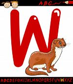 Letter W For Weasel Cartoon Illustration