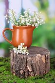 Beautiful lilies of the valley in jar on stump, on nature background