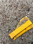 Yellow Litter on Gravel Path